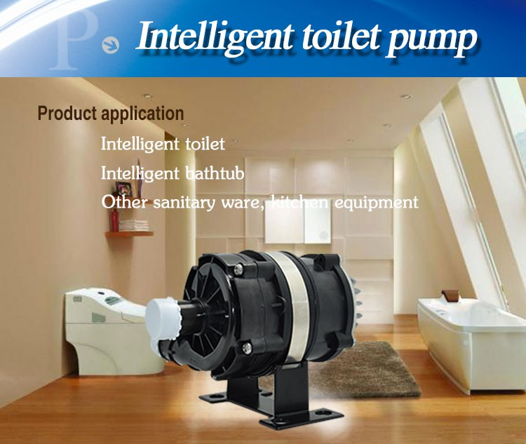 Electric Water Pump for Engine Cooling