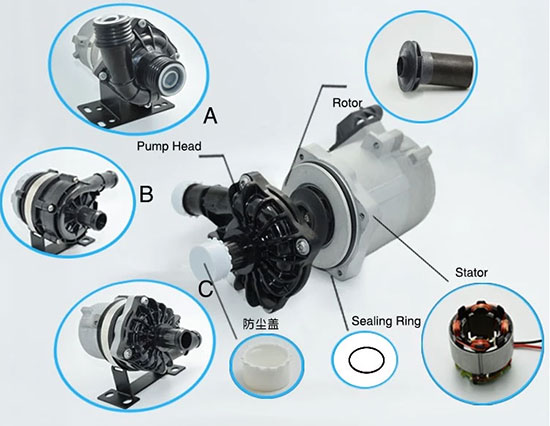 automotive electric water pump structure